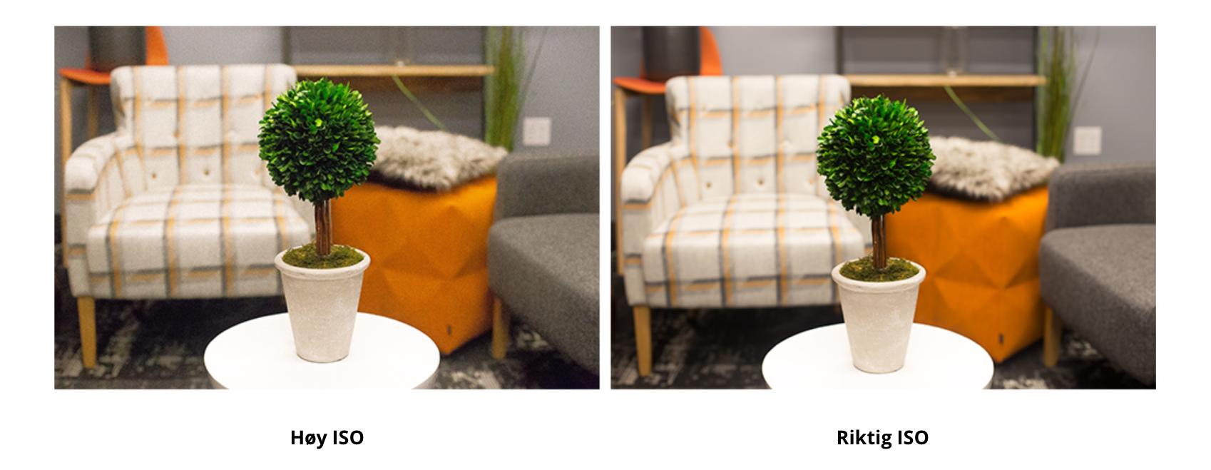 Bilde for å vise forskjellen på kamerainnstilling med lav og høy ISO.