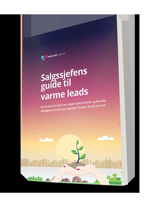 salgssjefens-guide-til-varme-leads